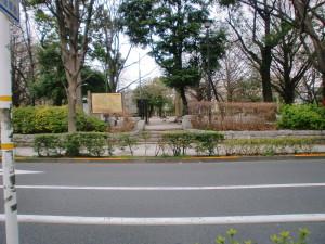 平和公園(板橋区)でBBQをしよう!内のイメージ