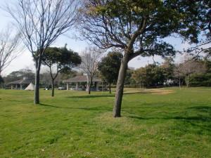若洲公園でBBQをしよう!内のイメージ